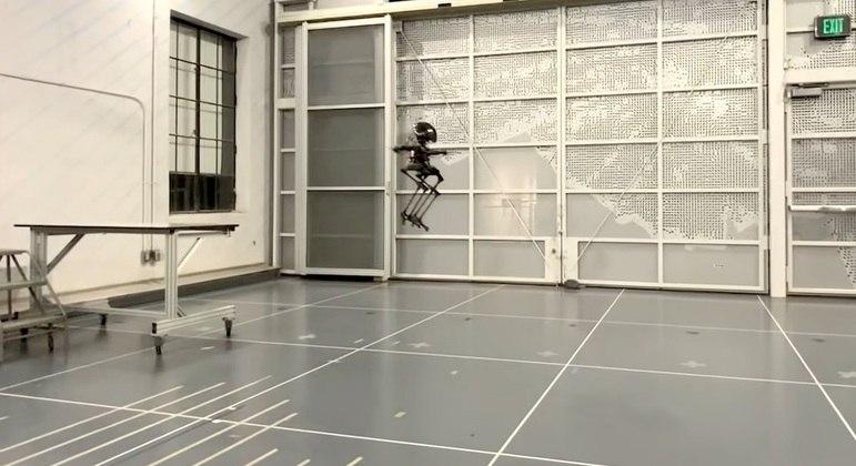 Robô de 76 cm foi batizado de Leonardo pelos seus criadores