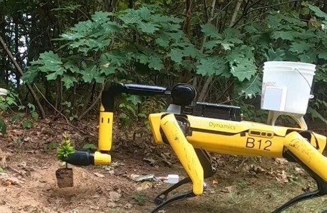 O robô mostrou também ser bom também com jardinagem. No material de divulgação, ele aparece manipulando uma muda com o seu braço mecânico e plantando na terra