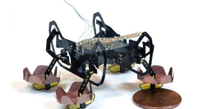 Robô barata pesa somente 1,64 gramas e pode até andar embaixo da água
