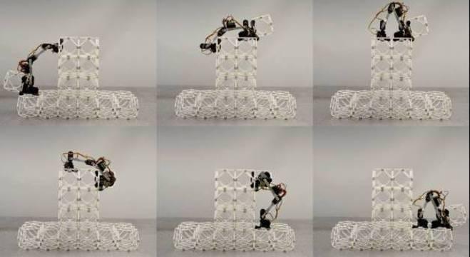 Robôs são capazes de construir grandes estruturas