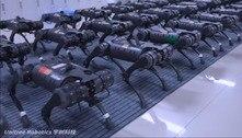 Vídeo de esquadrão de robôs chama atenção de internautas