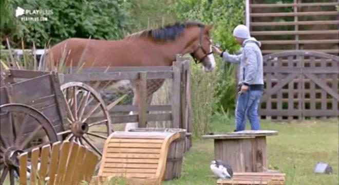 O ator sente um carinho muito grande pelo cavalo Lyon