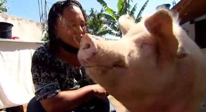 """Rosângela e seu melhor amigo, o porco """"João"""""""
