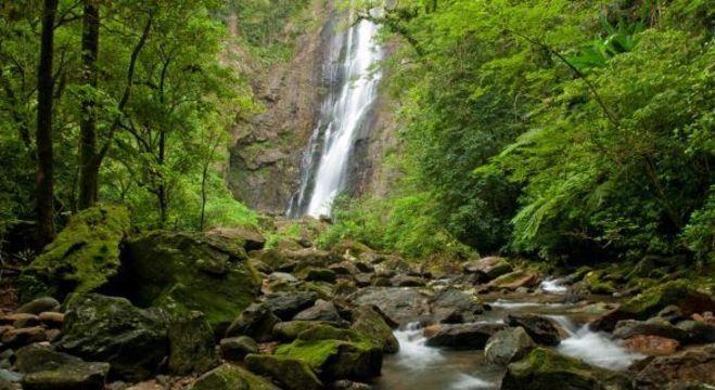 Fundação Boticário quer apoio da sociedade para melhorar turismo ambiental