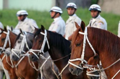 Os cavalos devem começar a rodar hoje