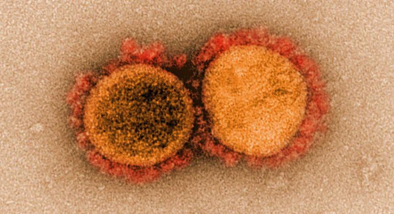 Vacina universal pode ajudar a prevenir futuros surtos de novos coronavírus