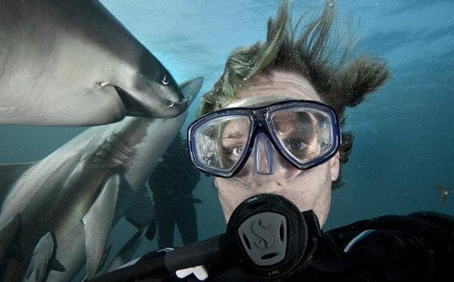 O dado pertence à pesquisa The Danger Selfies ( em tradução livre, as selfies perigosas), realizada pelo site de fotografia Inkifi
