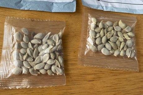 Pacotes com sementes não-identificadas