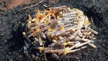 Seringas são descartadas em parque do Recanto das Emas, no DF