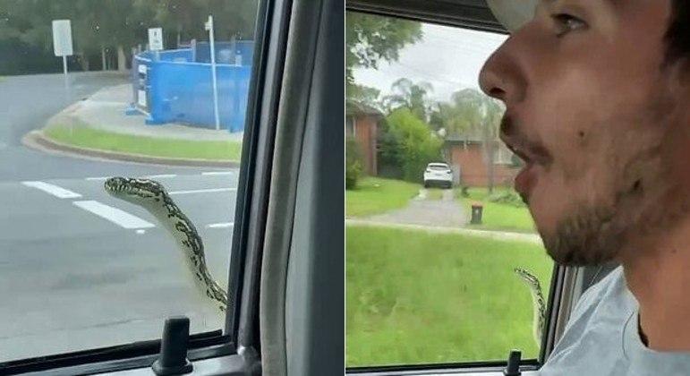 Casal australiano foi surpreendido por serpente clandestina na janela do carro