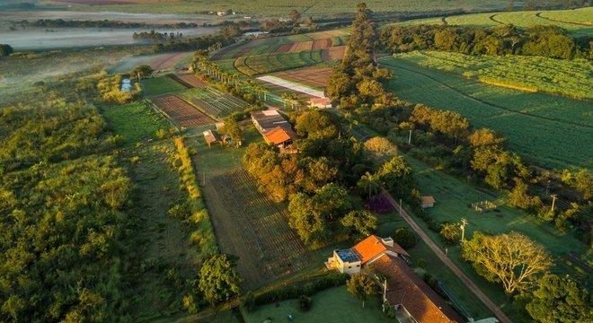 """""""Quem não gosta de agrotóxicos fica criativo"""", diz agricultor holandês sobre necessidade de encontrar técnicas alternativas de cultivo"""
