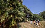 Área verde virou um sítio arqueológico a céu aberto