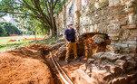 Arqueólogos trabalham em busca de indícios de testemunhos de uma São Paulo dos séculos passados e pré-colonial
