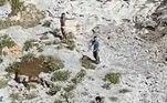 A operação ocorreu ontem (09), após autoridades costeiras verem bandeiras agitadas na ilha, durante uma patrulha aérea rotineira. Segundo a Guarda Costeira, os sobreviventes são cidadãos cubanos e não tiveram os nomes citadosLEIA TAMBÉM:Impala escapa de crocodilo, mas é devorado por leopardo logo depois