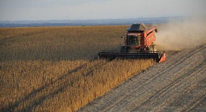 Importações de soja brasileira pela China batem recorde em junho