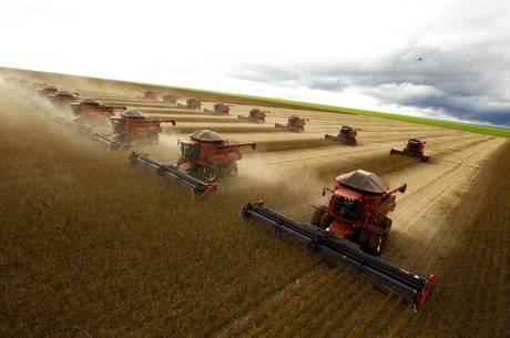 Brasil é o maior produtor de soja do mundo