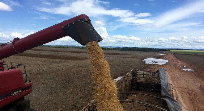FMI aposta melhores anos para exportadores de commodities, como a soja (foto)