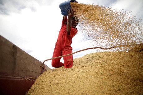 Agropecuária caiu 0,3% de janeiro a setembro de 2018