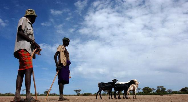 Bandidos roubaram gado de tribo e conflitos começaram
