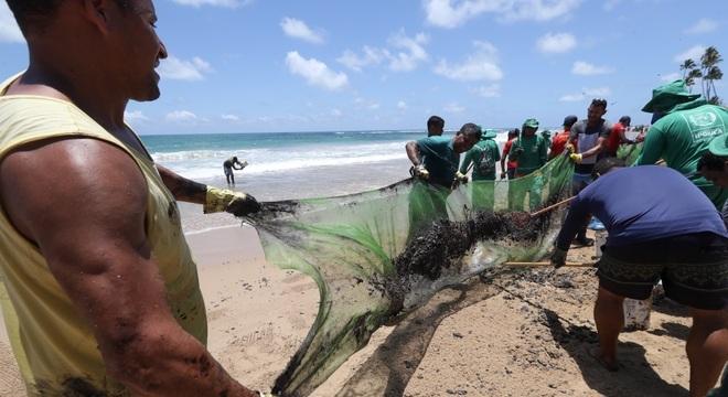 Funcionários e voluntários trabalham para retirar óleo de praia de Ipojuca