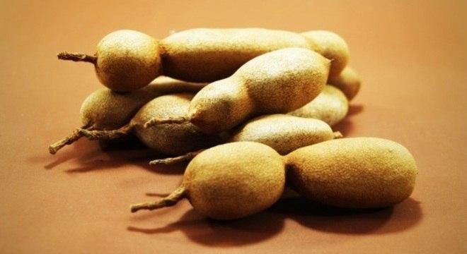 Com formato de vagem e sabor ácido, tamarindo leva 245 dias para amadurecer