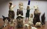 Jack Devaney é um artista, e os objetos de sua arte são animais mortos. Com técnicas de taxidermia, ele cria novas espécies de animais, quimeras assustadoras que envolvem até objetos tecnológicos, como plugs USB e mouse. Coisa fina!