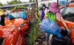 Se antes os funcionários da garagem de táxis trabalhavamajudando motoristas com suas diárias e eventuais amassados nos carros, agoratêm a função de adubar as plantas e cultivar as pequenas mudas