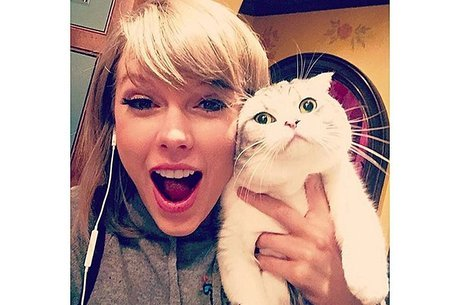 Gata de Taylor Swift acumulou fortuna