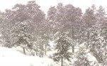 Prevê-se que as condições de nevascas continuem atéa meia-noite (horário local) desta segunda-feira (15) em partes do Colorado