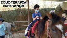Terapia com cavalos para PcDs vive de doações na periferia de SP