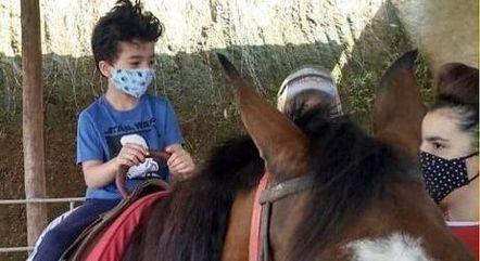 Terapia com cavalos ajuda crianças e idosos com deficiência