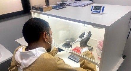 UFMG identificou duas amostras de variante delta