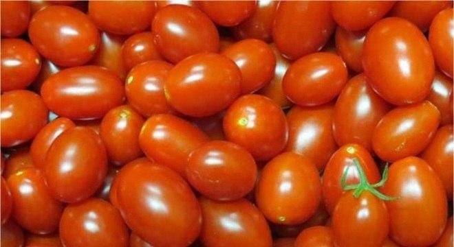 Preço do tomate caiu 15,96% em outubro, segundo o Dieese