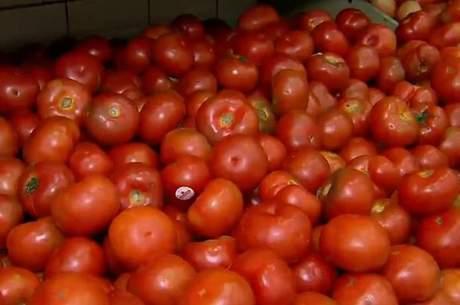 Tomate foi a principal contribuição de alta