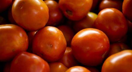 Preço do tomate deve seguir em alta