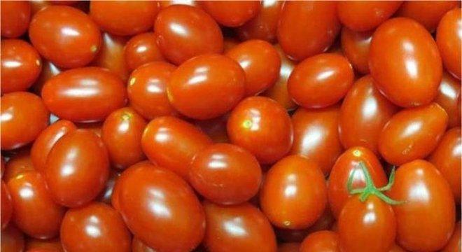 Tomate foi o produto que teve maior inflação no período Crédito:  Leandro Santos Lobo/ Embrapa / Agência Brasil / CP