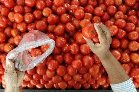 Tomate-caqui é um dos legumes da estação