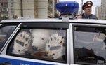 Mau elementoVeja também:Monumento com peixes duvidosos vai abaixo após indignação online