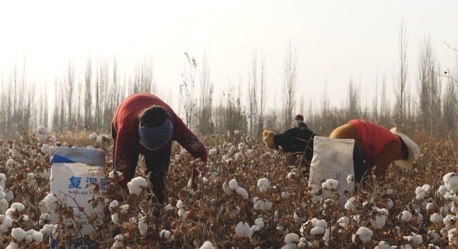 Maioria dos trabalhadores pertence a minorias étnicas como os uigures, que são muçulmanos