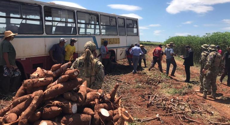 Operação conjunta combate trabalho escravo em fazendas no centro-oeste paulista