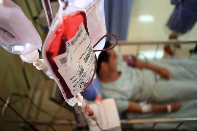 Quando é feita a doação de sangue para um parente, esse sangue vai direto para ele? Cerca de 99% dos casos, não. Na maioria das ocasiões, o sangue que o paciente recebe é proveniente de um banco de sangue. Porém, em casos de doação específica, em que o pai faz questão de doar o sangue para o filho, por exemplo, o sangue recebido, se compatível, pode vir de um familiar