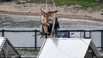 __ONG usa avião para levar baleias de aquário na China à Islândia__ (Yuri Maltsev/Reuters - 20.06.2019)