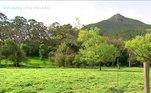A Trilha do Cambirela é uma das mais perigosas naregião de Florianópolis (SC) e fica fechada para visitação em diversos períodos doano. O fôlego diminui com a subida e protetor solar e repelentes sãoessenciais. Bombeiros aconselham a nunca fazer a trilha sem companhia