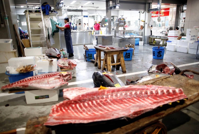 Maior mercado de peixes do mundo tem novo endereço em Tóquio