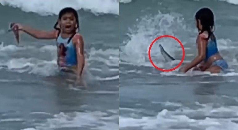 Garotinha de 6 anos quase foi atropelada por tubarão em praia do Havaí