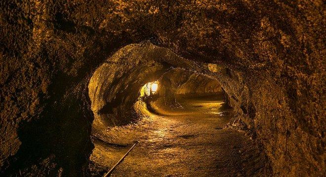 Túneis de lava são comuns no Havaí — alguns têm 'claraboias' para a superfície, que podem ser cobertas por arbustos