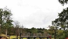 Ponte do Ursinho Pooh é leiloada por R$ 986 mil no Reino Unido