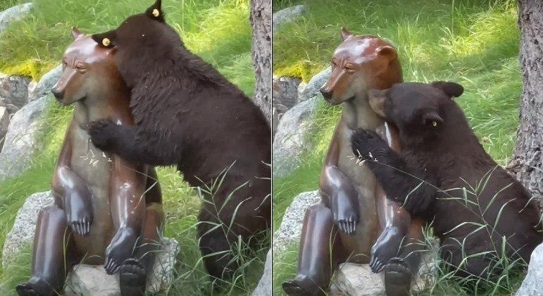 Urso trocou carícias com estátua de metal polido, que enfeita quintal de casa nos EUA