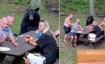 Um grupo estava fazendo piquenique em uma reserva ambiental em Maryland, EUA, quando o urso negro se juntou a eles*Estagiária doR7, sob supervisão de Filipe Siqueira