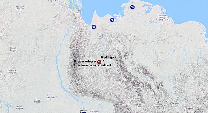 Os pontos azuis mostram onde os ursos polares normalmente ficam. O ponto vermelho é onde o animal perdido foi visto correndo